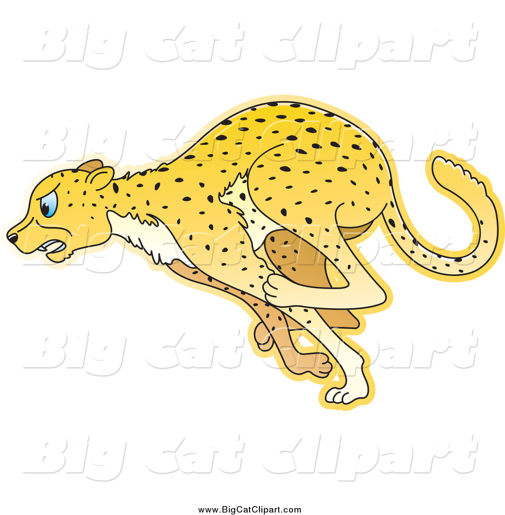 Royalty Free Stock Big Cat Designs of Wild Animals