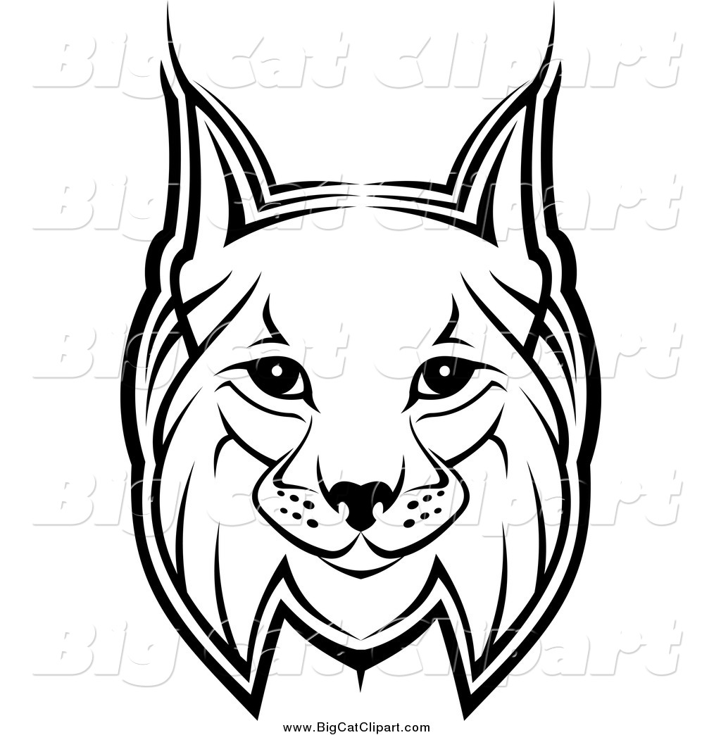 big cat vector clipart of a bobcat face by vector tradition sm 1027