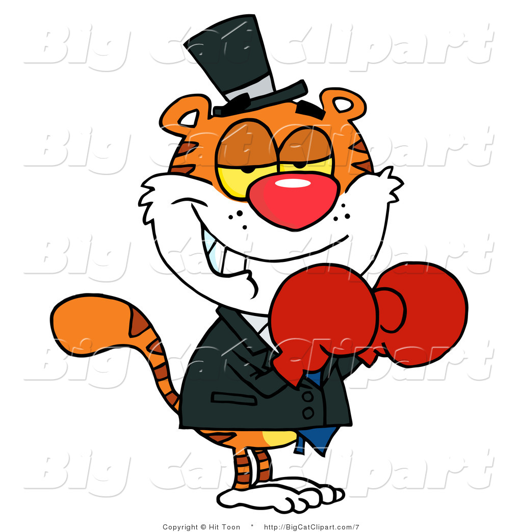 Cat Wearing Boxing Gloves