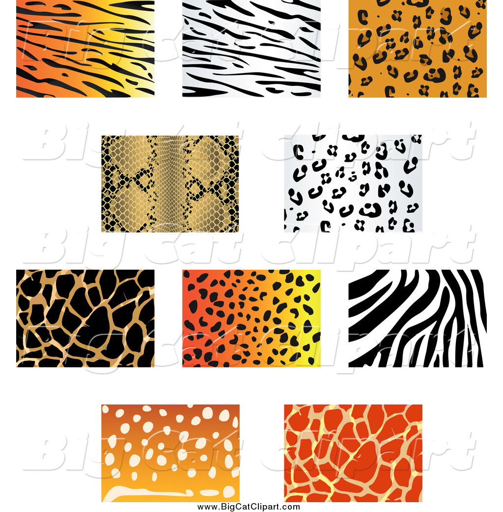 A Jungle Of Big Cat Designs: Royalty Free Stock Big Cat Designs Of Animal Prints