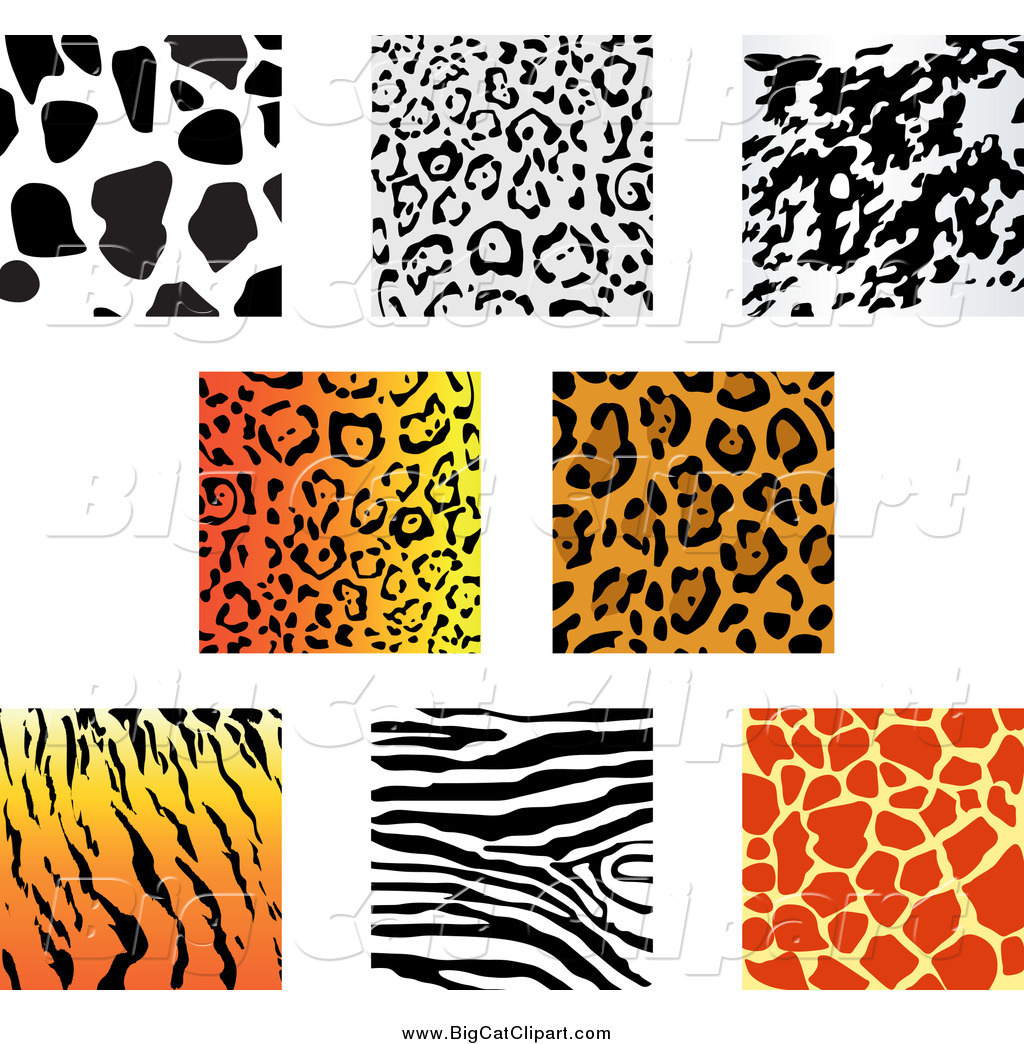 royalty free stock big cat designs of animal prints