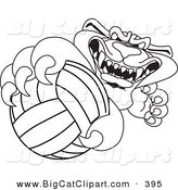 Big Cat Cartoon Vector Clipart of a Black Outline of a Panther Character Mascot Grabbing a Volleyball by Toons4Biz