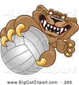 Big Cat Cartoon Vector Clipart of a Brown Cougar Mascot Character Grabbing a Volleyball by Toons4Biz