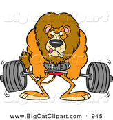 Big Cat Cartoon Vector Clipart of a Cartoon Male Lion Weightlifting by Toonaday