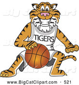 Big Cat Cartoon Vector Clipart of a Cheerful Tiger Character School Mascot Playing Basketball by Toons4Biz