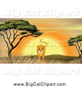 Big Cat Cartoon Vector Clipart of a Cheetah Walking by an Acacia Tree at Sunset by Graphics RF