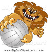 Big Cat Cartoon Vector Clipart of a Comeptitive Lion Character Mascot Grabbing a Volleyball by Toons4Biz
