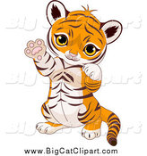Big Cat Cartoon Vector Clipart of a Cute Baby Tiger Cub Sitting up and Gesturing Playfully with His Paws by Pushkin
