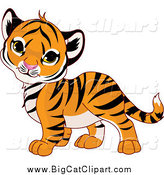 Big Cat Cartoon Vector Clipart of a Cute Baby Tiger Cub Tilting His Head by Pushkin