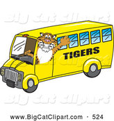 Big Cat Cartoon Vector Clipart of a Grinning Tiger Character School Mascot Driving a Bus by Toons4Biz