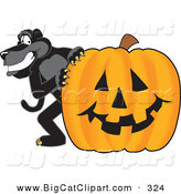 Big Cat Cartoon Vector Clipart of a Happy Black Jaguar Mascot Character with a Halloween Pumpkin by Toons4Biz