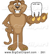 Big Cat Cartoon Vector Clipart of a Happy Cougar Mascot Character Holding a Tooth by Toons4Biz