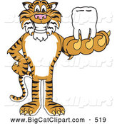 Big Cat Cartoon Vector Clipart of a Happy Tiger Character School Mascot Holding a Tooth by Toons4Biz