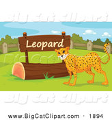 Big Cat Cartoon Vector Clipart of a Leopard by a Sign by Graphics RF