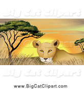 Big Cat Cartoon Vector Clipart of a Lioness in Grass at Sunset by Graphics RF