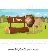 Big Cat Cartoon Vector Clipart of a Male Zoo Lion by a Sign by Graphics RF