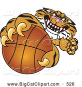 Big Cat Cartoon Vector Clipart of a Mean Tiger Character School Mascot Grabbing a Basketball by Toons4Biz
