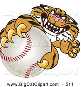 Big Cat Cartoon Vector Clipart of a Menacing Tiger Character School Mascot Grabbing a Baseball by Toons4Biz