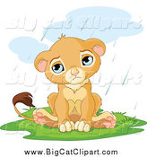 Big Cat Cartoon Vector Clipart of a Sad Lion Cub Sitting in the Rain by Pushkin