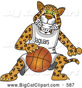 Big Cat Cartoon Vector Clipart of a Smiling Jaguar Character School Mascot Playing Basketball by Toons4Biz