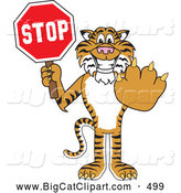 Big Cat Cartoon Vector Clipart of a Smiling Tiger Character School Mascot Holding a Stop Sign by Toons4Biz
