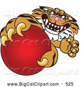 Big Cat Cartoon Vector Clipart of a Vicious Tiger Character School Mascot Grabbing a Red Ball by Toons4Biz