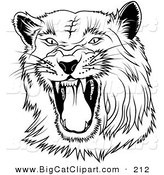Big Cat Clipart of a Black and White Hissing Panther on WhiteBlack and White Hissing Panther on White by Dero