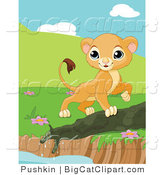 Big Cat Clipart of a Curious Lion Cub Walking by a Pond Edge by Pushkin