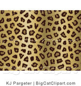 Big Cat Clipart of a Gold Tan and Black Leopard Spots Background by KJ Pargeter