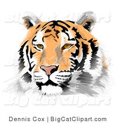 Big Cat Clipart of a Handsome Tiger Face by Djart