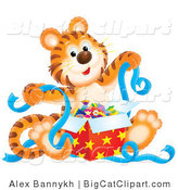 Big Cat Clipart of a Happy Birthday Tiger Unwrapping a Present with Blue Ribbons by Alex Bannykh