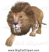 Big Cat Vector Clipart of a 3d Stalking Male Lion by Ralf61