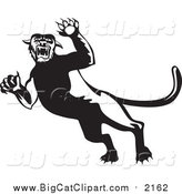 Big Cat Vector Clipart of a Black and White Attacking Panther by Patrimonio