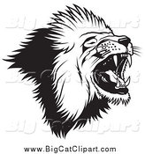 Big Cat Vector Clipart of a Black and White Roaring Lion by Dero