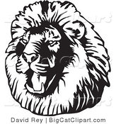 Big Cat Vector Clipart of a Black and White Roaring Male Lion Head Facing Left by David Rey