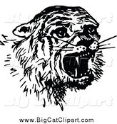 Big Cat Vector Clipart of a Black and White Scared Tiger by Prawny Vintage