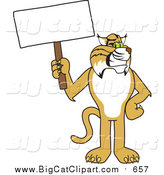 Big Cat Vector Clipart of a Bobcat Holding a Sign by Toons4Biz