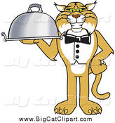 Big Cat Vector Clipart of a Bobcat Waiter Serving a Platter by Toons4Biz