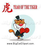 Big Cat Vector Clipart of a Boxer Cat with a Year of the Tiger Chinese Symbol and Text by Hit Toon