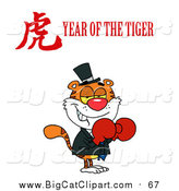 Big Cat Vector Clipart of a Boxer Tiger with a Year of the Tiger Chinese Symbol and Text by Hit Toon