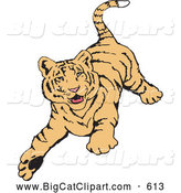 Big Cat Vector Clipart of a Friendly Playful Tiger Running Forward by Dennis Holmes Designs