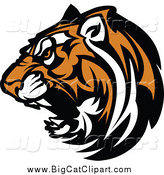 Big Cat Vector Clipart of a Growling Tiger Head by Chromaco