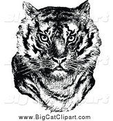 Big Cat Vector Clipart of a Retro Black and White Tiger Face by Prawny Vintage