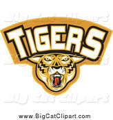 Big Cat Vector Clipart of a Tigers Sports Banner by Patrimonio