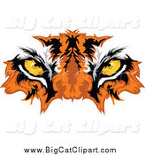 Big Cat Vector Clipart of Golden Tiger Eyes by Chromaco