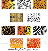 April 26th, 2015: Big Cat Vector Clipart of Jungle Animal Print Backgrounds by Vector Tradition SM