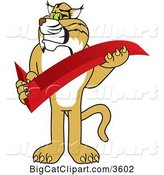 Vector Clipart of a Cartoon Bobcat School Mascot Holding a Check Mark, Symbolizing Acceptance by Toons4Biz