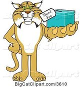 Vector Clipart of a Cartoon Bobcat School Mascot Holding up a Thank You Gift, Symbolizing Gratitude by Toons4Biz