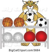 Vector Clipart of a Cartoon Bobcat School Mascot Putting a Soccer Ball Back on a Rack, Symbolizing Respect by Toons4Biz