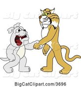 Vector Clipart of a Cartoon Bobcat School Mascot Shaking Hands with a Bulldog, Symbolizing Acceptance and Introduction by Toons4Biz